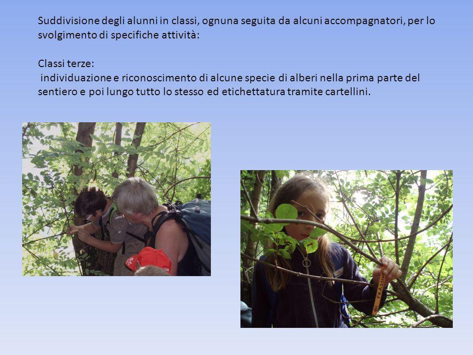 FRUTTA NELLE SCUOLE Per ulteriori informazioni vd. http://www.fruttanellescuole.gov.it/