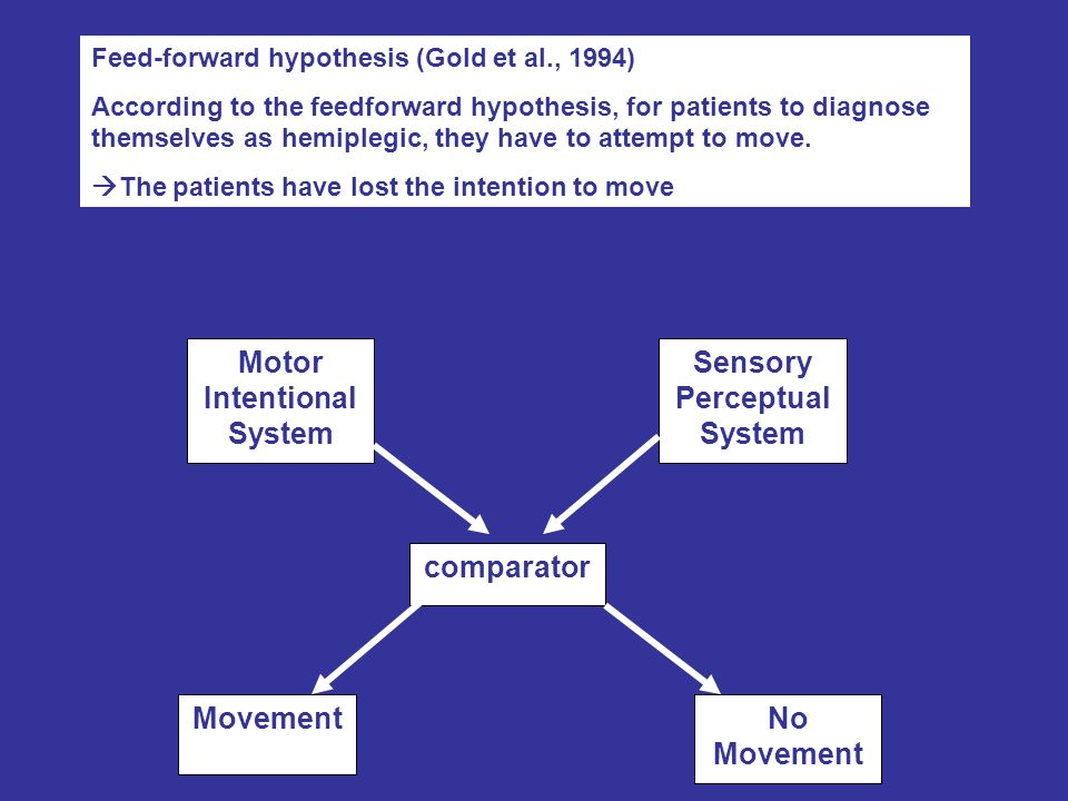 Feed-forward hypothesis (Gold et al., 1994) According to the feedforward hypothesis, for patients to diagnose themselves as hemiplegic, they have to a