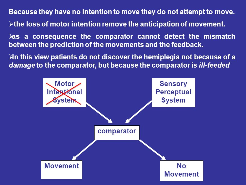 Motor Intentional System Sensory Perceptual System comparator MovementNo Movement Because they have no intention to move they do not attempt to move.