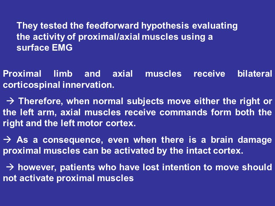 They tested the feedforward hypothesis evaluating the activity of proximal/axial muscles using a surface EMG Proximal limb and axial muscles receive b