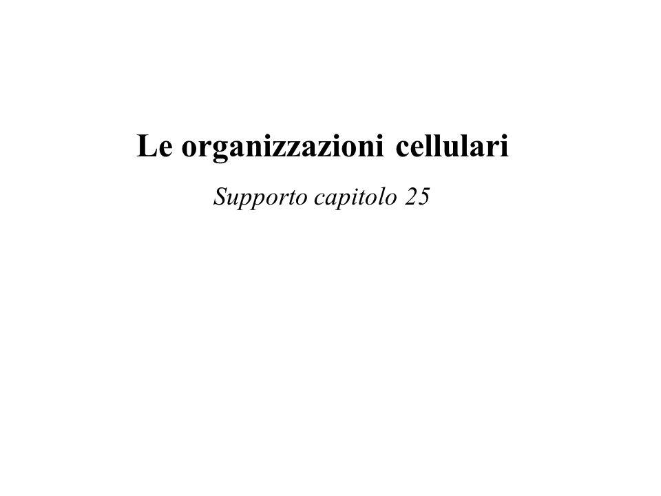 Le organizzazioni cellulari Supporto capitolo 25