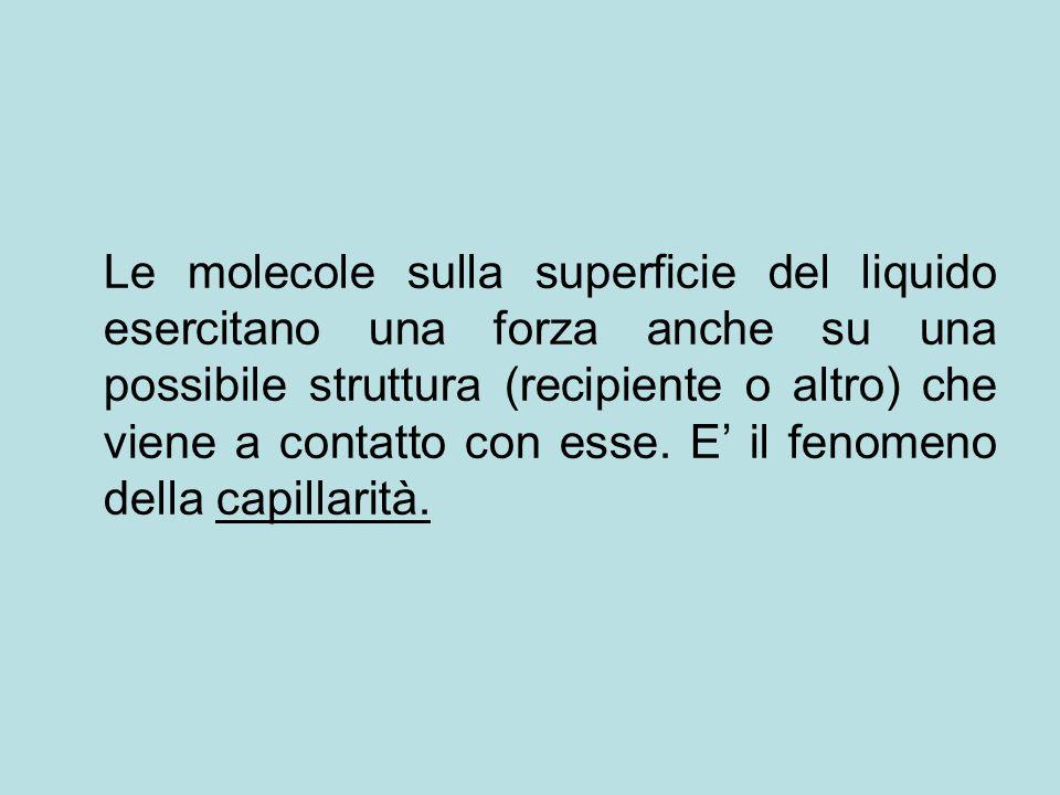 Le molecole sulla superficie del liquido esercitano una forza anche su una possibile struttura (recipiente o altro) che viene a contatto con esse. E i