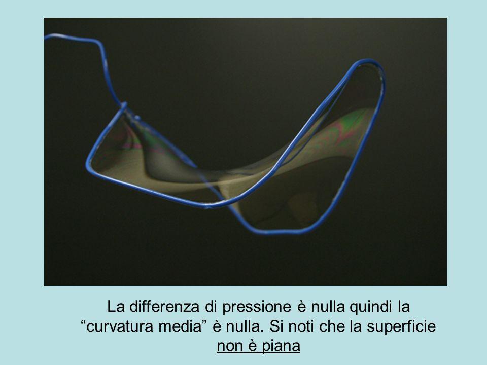La differenza di pressione è nulla quindi la curvatura media è nulla. Si noti che la superficie non è piana