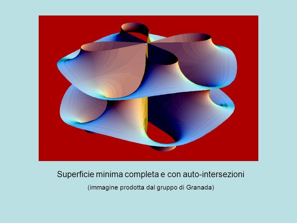 Superficie minima completa e con auto-intersezioni (immagine prodotta dal gruppo di Granada)