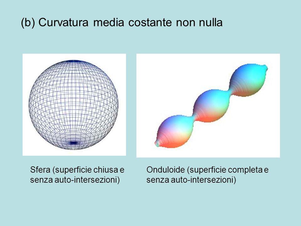 (b) Curvatura media costante non nulla Sfera (superficie chiusa e senza auto-intersezioni) Onduloide (superficie completa e senza auto-intersezioni)