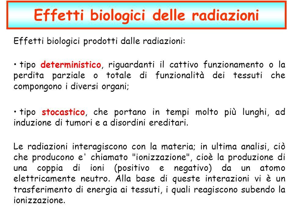 Effetti biologici delle radiazioni Effetti biologici prodotti dalle radiazioni: tipo deterministico, riguardanti il cattivo funzionamento o la perdita
