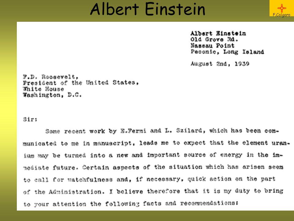 F.Calgaro Albert Einstein