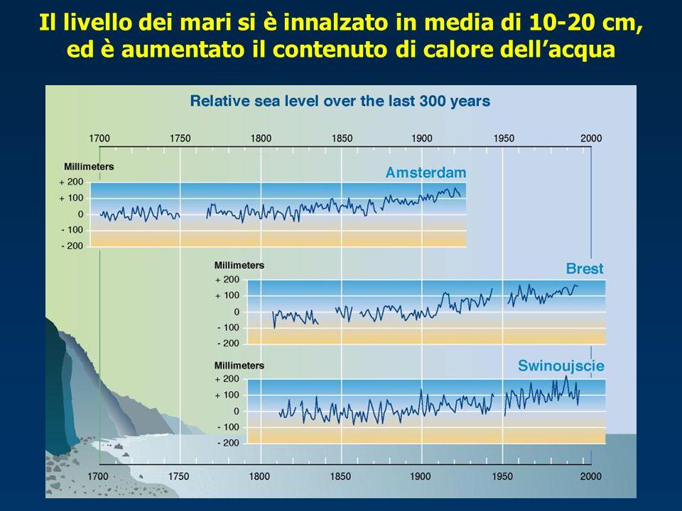 Il livello dei mari si è innalzato in media di 10-20 cm, ed è aumentato il contenuto di calore dellacqua