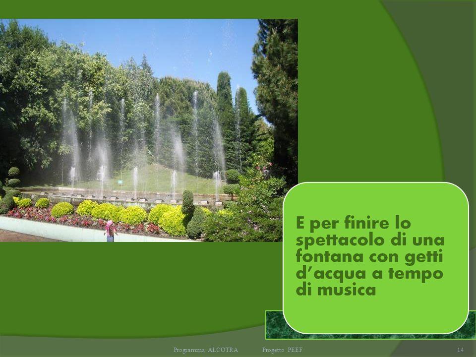 Programma ALCOTRA Progetto PEEF14