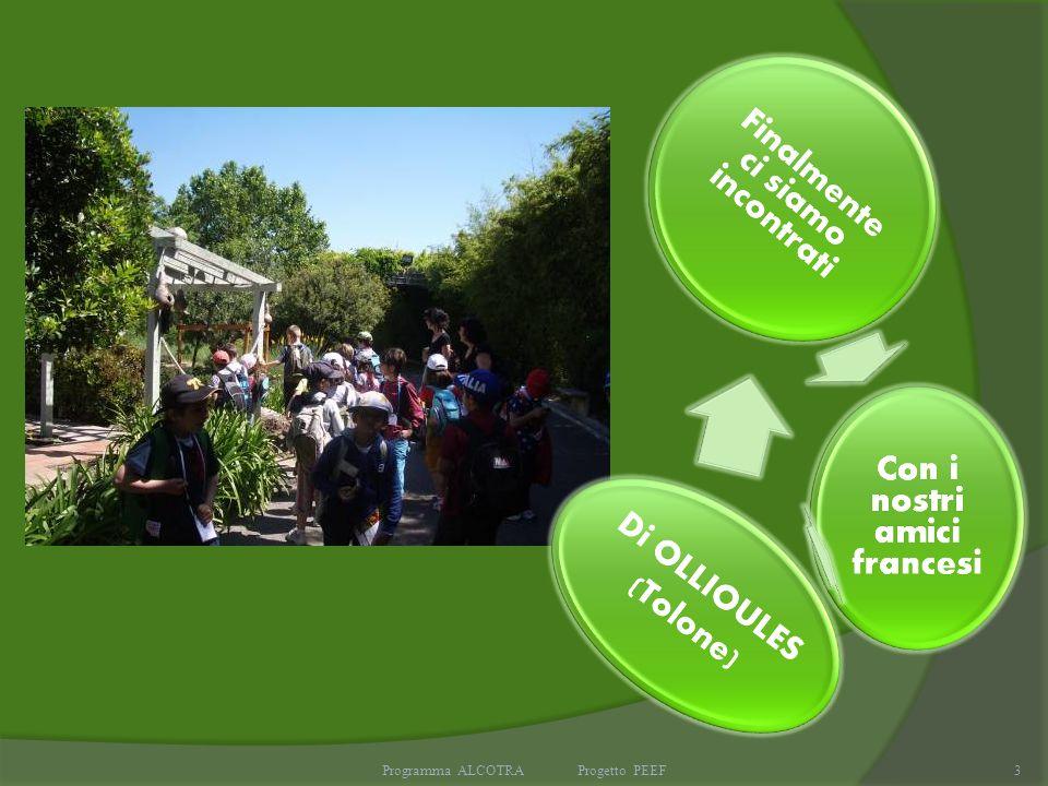 Programma ALCOTRA Progetto PEEF3