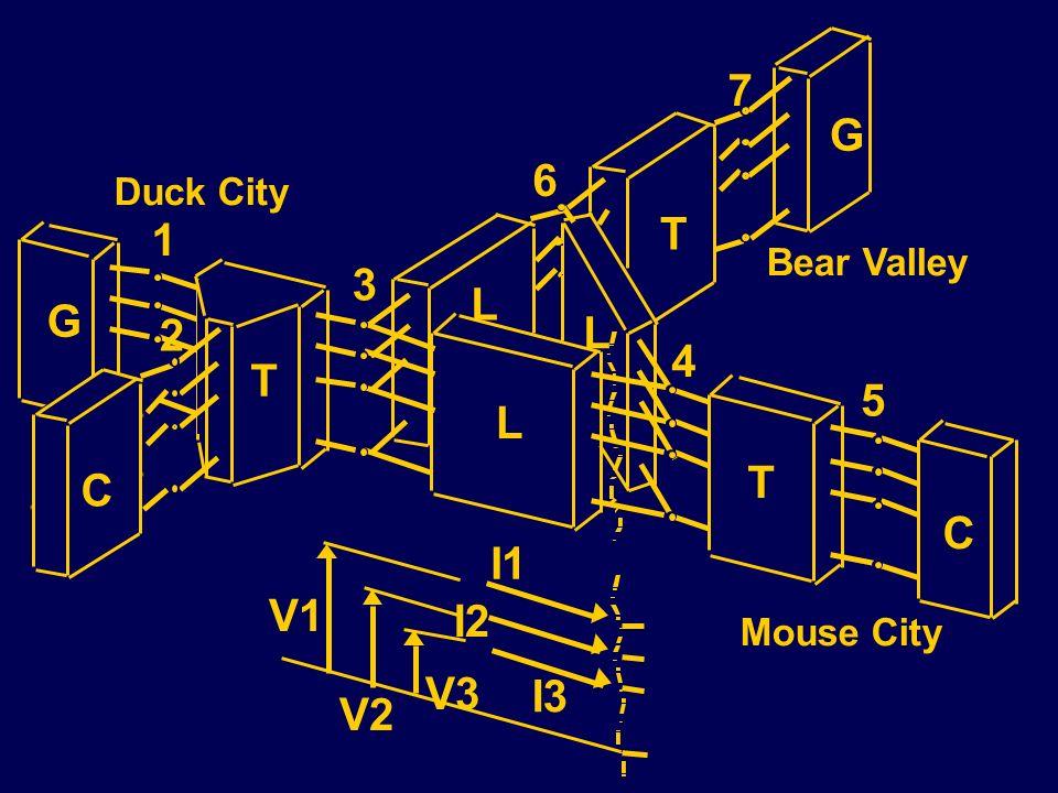 7 L L L T T C T G C G 1 2 3 4 5 6 V1 V2 V3 I1 I2 I3 Bear Valley Duck City Mouse City