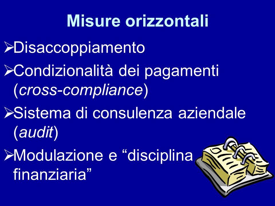 Misure orizzontali Disaccoppiamento Condizionalità dei pagamenti (cross-compliance) Sistema di consulenza aziendale (audit) Modulazione e disciplina f