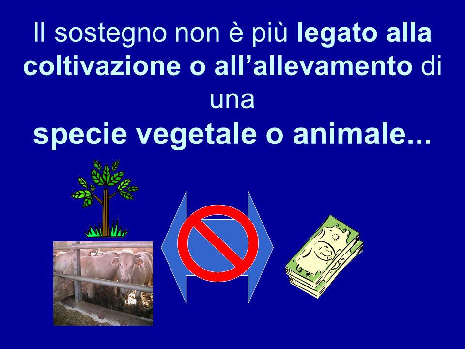 Il sostegno non è più legato alla coltivazione o allallevamento di una specie vegetale o animale...