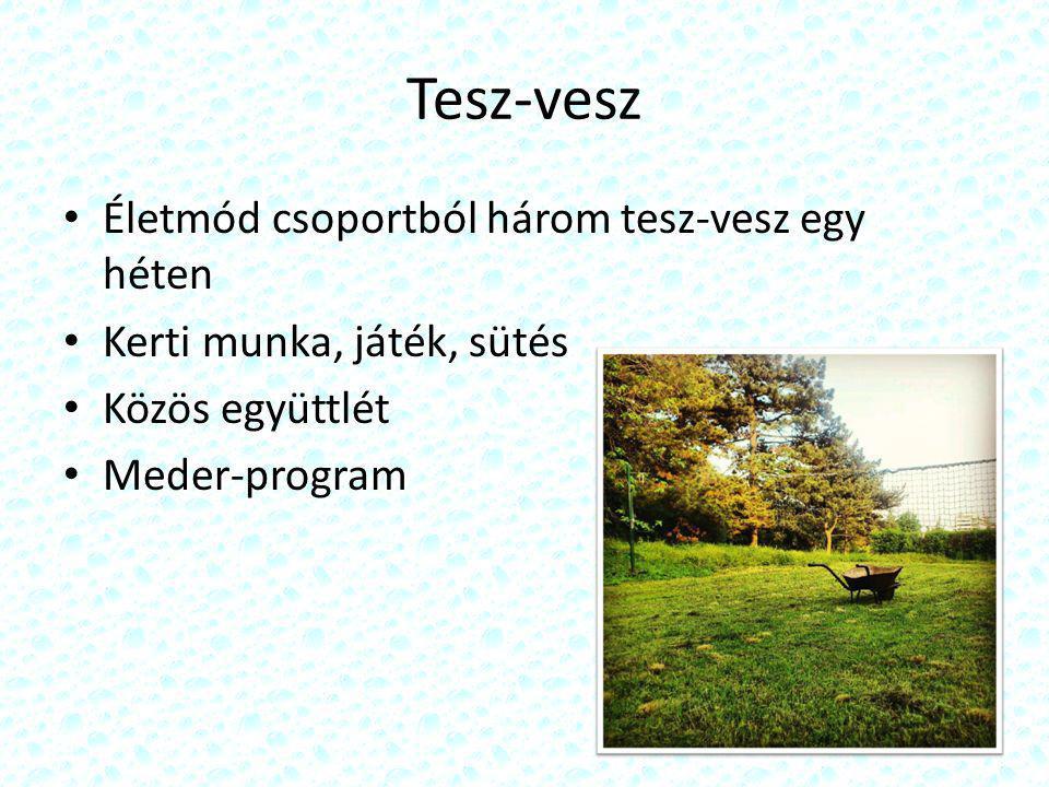 Tesz-vesz Életmód csoportból három tesz-vesz egy héten Kerti munka, játék, sütés Közös együttlét Meder-program