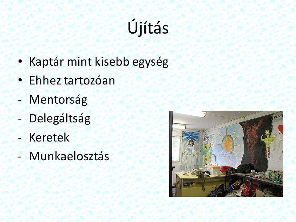 Újítás Kaptár mint kisebb egység Ehhez tartozóan -Mentorság -Delegáltság -Keretek -Munkaelosztás