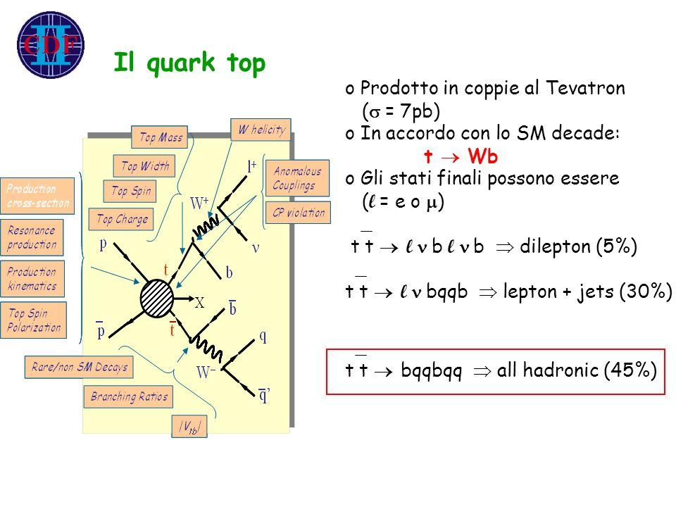 Il quark top o Prodotto in coppie al Tevatron ( = 7pb) o In accordo con lo SM decade: t Wb o Gli stati finali possono essere ( l = e o ) t t l b l b d