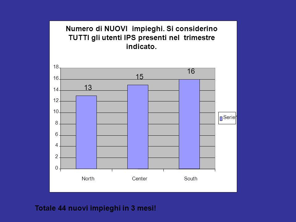 13 15 16 0 2 4 6 8 10 12 14 16 18 NorthCenterSouth Serie1 Numero di NUOVI impieghi. Si considerino TUTTI gli utenti IPS presenti nel trimestre indicat