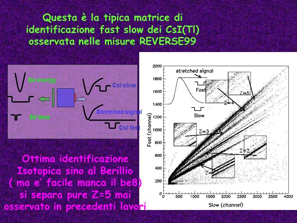 Questa è la tipica matrice di identificazione fast slow dei CsI(Tl) osservata nelle misure REVERSE99 CsI slow Stretched signal CsI fast Sil energy Sil
