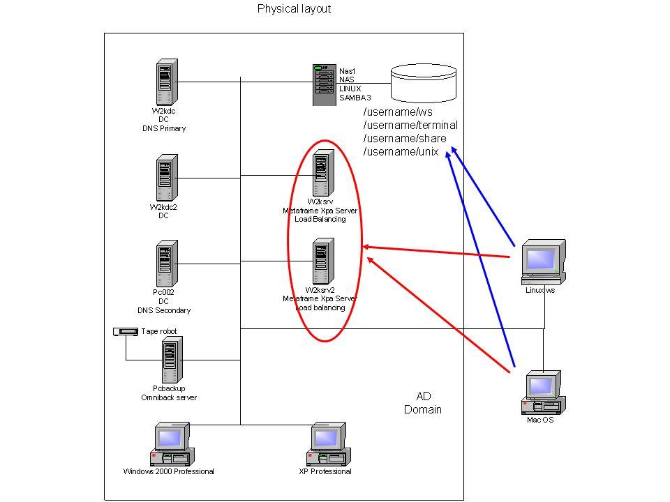 Citrix Metaframe Server Application Server load balanced.