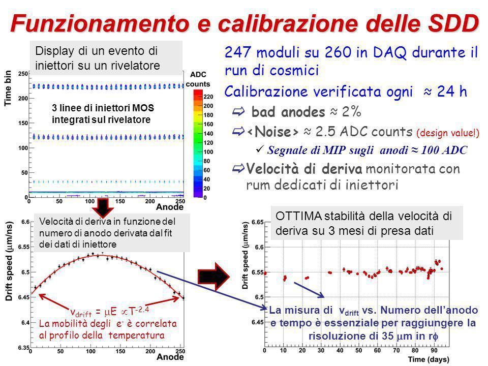 Funzionamento e calibrazione delle SDD 247 moduli su 260 in DAQ durante il run di cosmici Calibrazione verificata ogni 24 h bad anodes 2% 2.5 ADC counts (design value!) Segnale di MIP sugli anodi 100 ADC Velocità di deriva monitorata con rum dedicati di iniettori Display di un evento di iniettori su un rivelatore Velocità di deriva in funzione del numero di anodo derivata dal fit dei dati di iniettore v drift = E T -2.4 La mobilità degli e - è correlata al profilo della temperatura OTTIMA stabilità della velocità di deriva su 3 mesi di presa dati La misura di v drift vs.