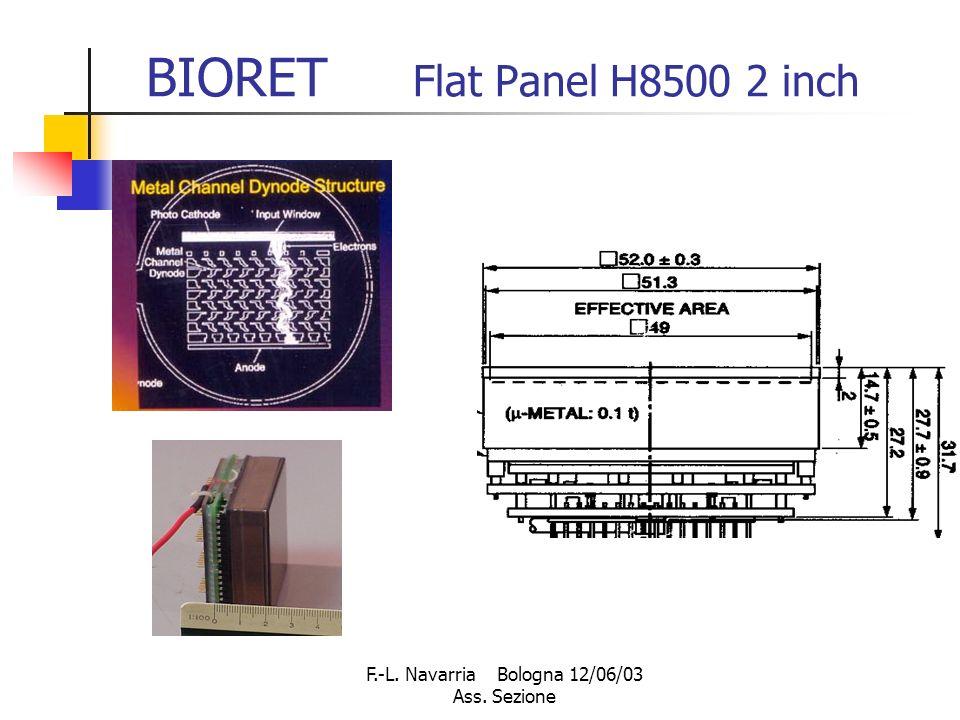 F.-L. Navarria Bologna 12/06/03 Ass. Sezione BIORET Flat Panel H8500 2 inch