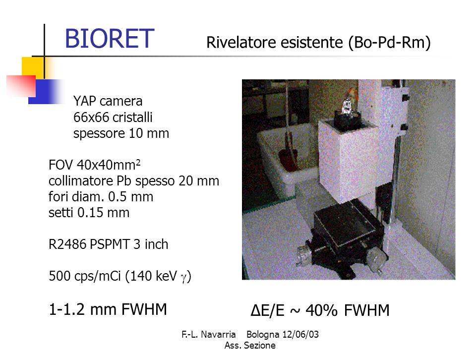 F.-L. Navarria Bologna 12/06/03 Ass.