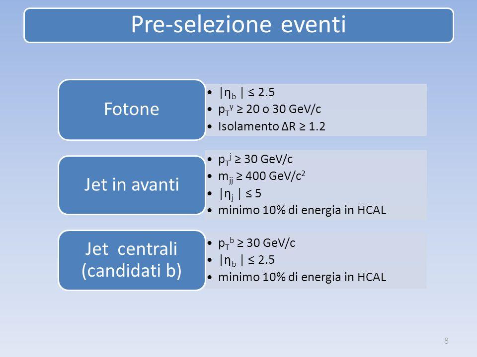 Pre-selezione eventi 8 |ηb | 2.5 p T γ 20 o 30 GeV/c Isolamento ΔR 1.2 Fotone pT j 30 GeV/c m jj 400 GeV/c 2 |η j | 5 minimo 10% di energia in HCAL Jet in avanti pT b 30 GeV/c |η b | 2.5 minimo 10% di energia in HCAL Jet centrali (candidati b)
