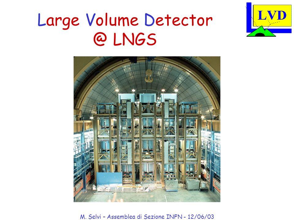 M. Selvi – Assemblea di Sezione INFN - 12/06/03 Large Volume Detector @ LNGS