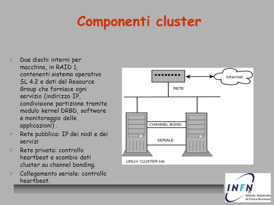 8 Componenti cluster Due dischi interni per macchina, in RAID 1, contenenti sistema operativo SL 4.2 e dati del Resource Group che fornisce ogni servi