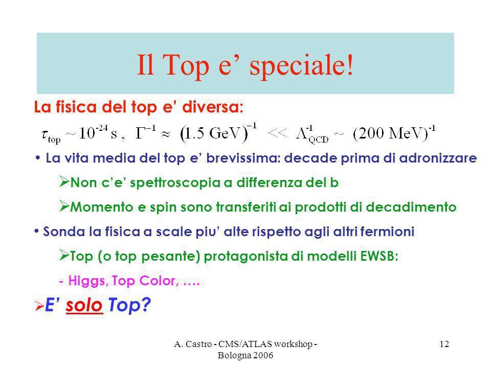 A. Castro - CMS/ATLAS workshop - Bologna 2006 12 Il Top e speciale.
