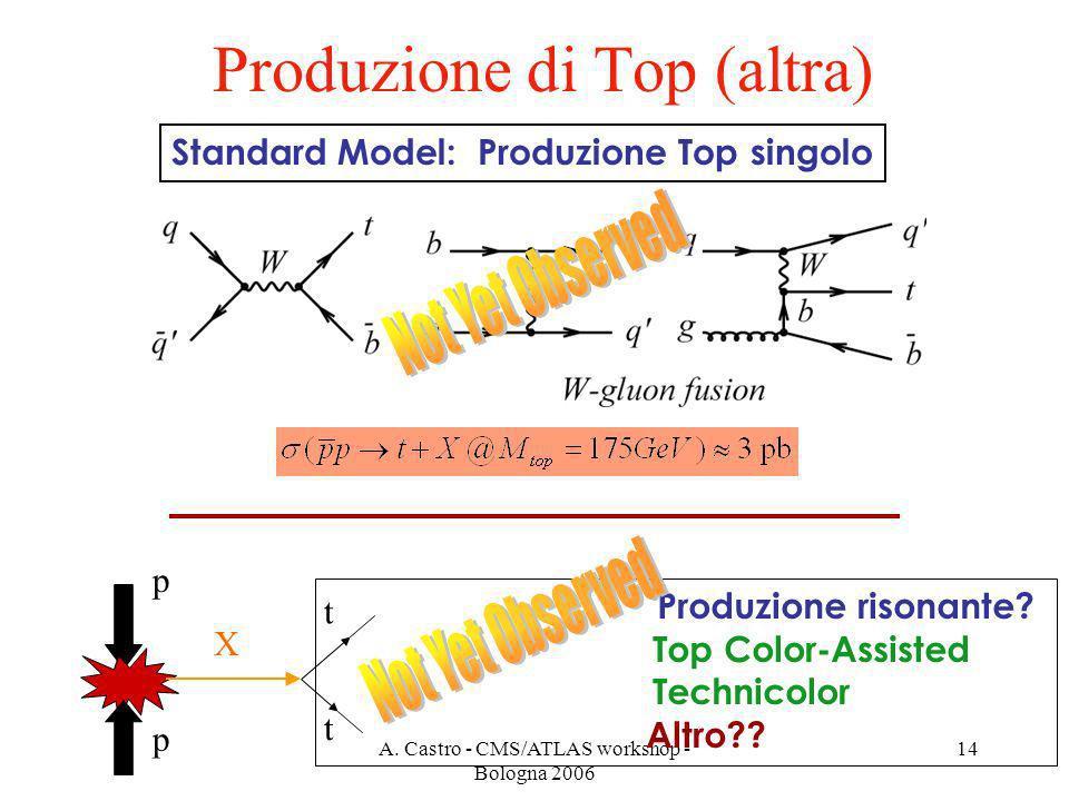 A. Castro - CMS/ATLAS workshop - Bologna 2006 14 Produzione di Top (altra) Standard Model: Produzione Top singolo p t t p X Produzione risonante? Top