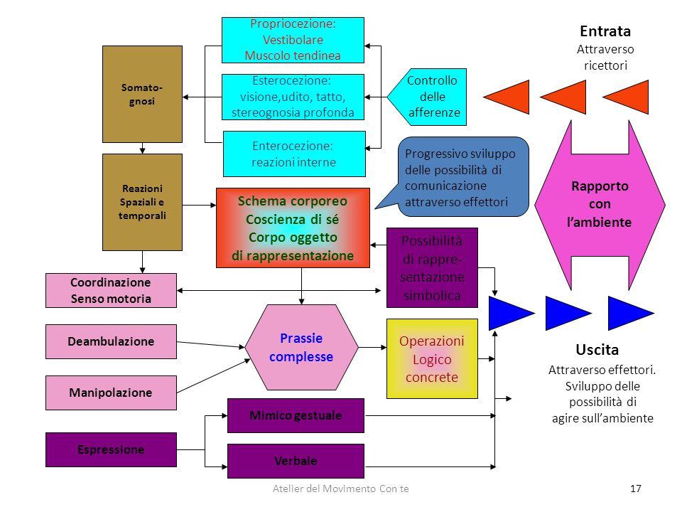 17 Espressione Manipolazione Coordinazione Senso motoria Deambulazione Somato- gnosi Reazioni Spaziali e temporali Propriocezione: Vestibolare Muscolo