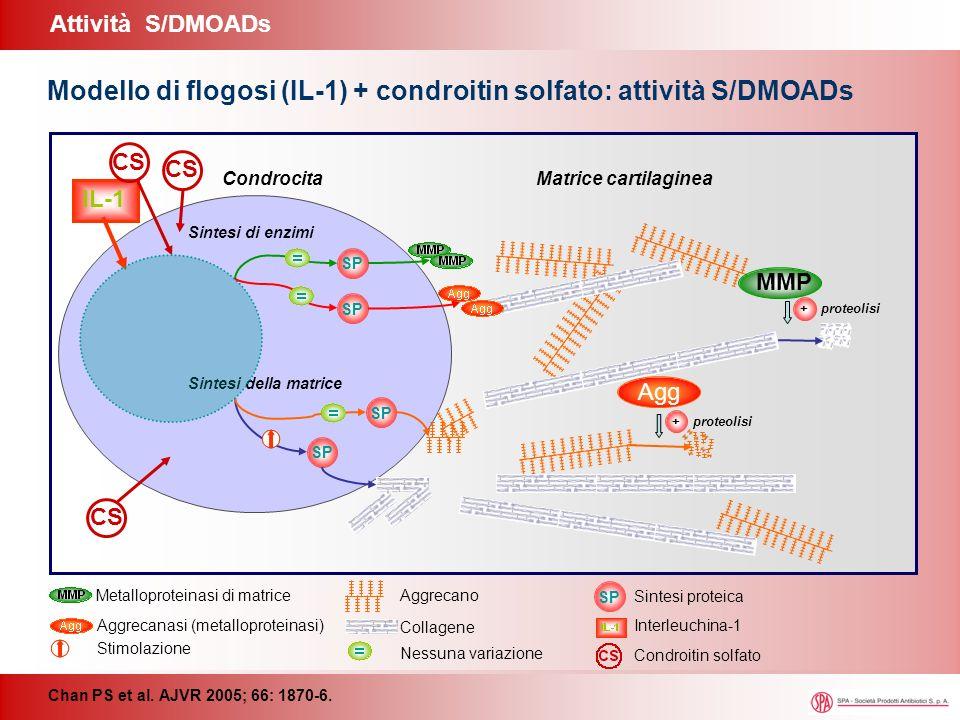 Agg MMP CondrocitaMatrice cartilaginea SP Sintesi della matrice Sintesi di enzimi + proteolisi SP IL-1 CS SP Interleuchina-1 Stimolazione Nessuna vari