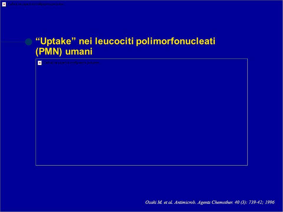 Uptake nei leucociti polimorfonucleati (PMN) umani Ozaki M. et al. Antimicrob. Agents Chemother. 40 (3): 739-42; 1996