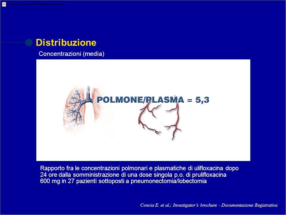 Distribuzione Concia E. et al.; Investigators brochure - Documentazione Registrativa Rapporto fra le concentrazioni polmonari e plasmatiche di uliflox