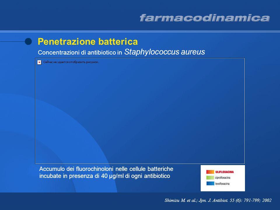 Prolungato effetto post-antibiotico (PAE) in Escherichia coli Broccali G.P., Visconti M.