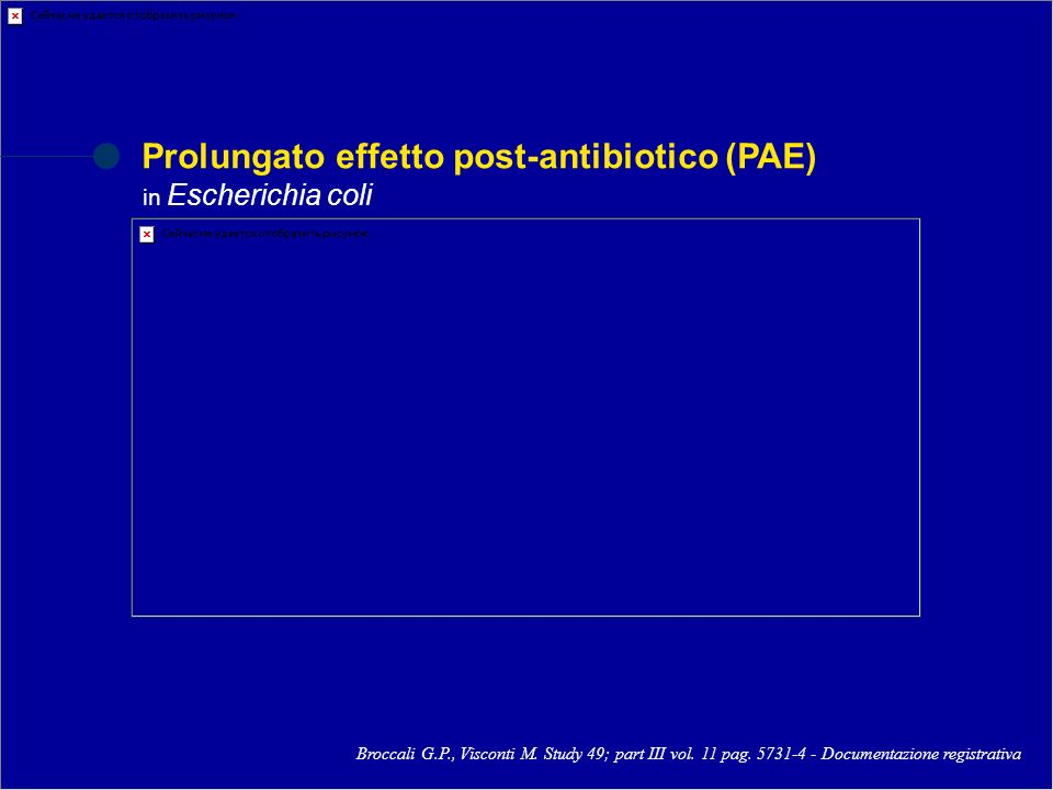 Prolungato effetto post-antibiotico (PAE) in Escherichia coli Broccali G.P., Visconti M. Study 49; part III vol. 11 pag. 5731-4 - Documentazione regis
