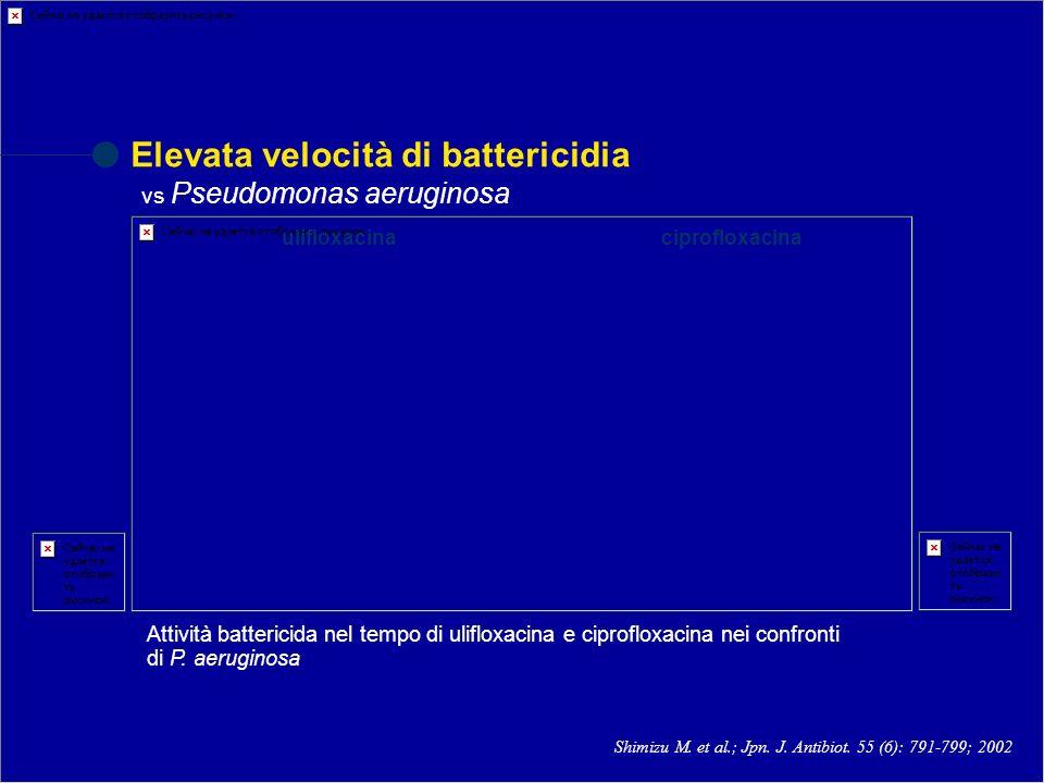 Shimizu M. et al.; Jpn. J. Antibiot. 55 (6): 791-799; 2002 Elevata velocità di battericidia vs Pseudomonas aeruginosa Attività battericida nel tempo d