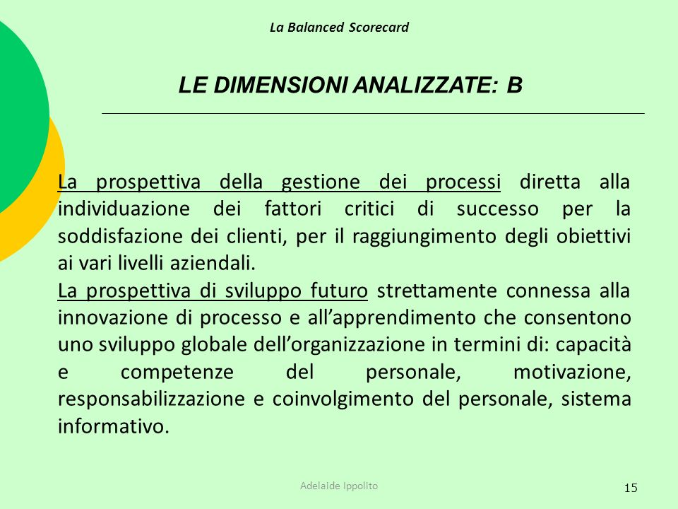 15 LE DIMENSIONI ANALIZZATE: B La prospettiva della gestione dei processi diretta alla individuazione dei fattori critici di successo per la soddisfaz