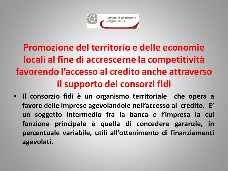 Promozione del territorio e delle economie locali al fine di accrescerne la competitività favorendo laccesso al credito anche attraverso il supporto d