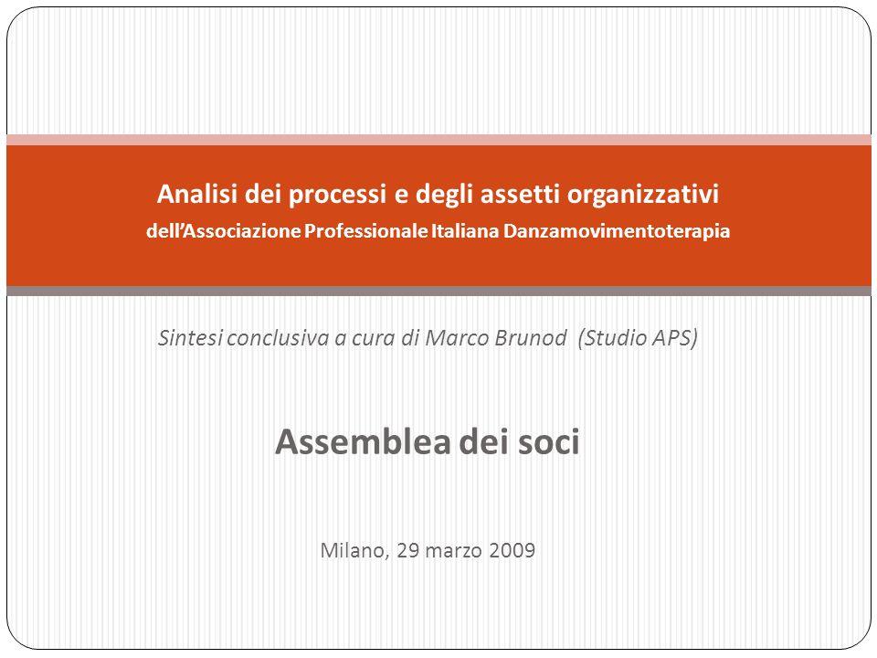 Sintesi conclusiva a cura di Marco Brunod (Studio APS) Assemblea dei soci Milano, 29 marzo 2009 Analisi dei processi e degli assetti organizzativi dellAssociazione Professionale Italiana Danzamovimentoterapia