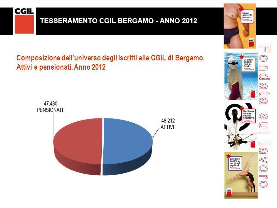 Composizione delluniverso degli iscritti alla CGIL di Bergamo. Attivi e pensionati. Anno 2012 TESSERAENTO CGIL BERGAMO. ANNO 2012 TESSERAMENTO CGIL BE