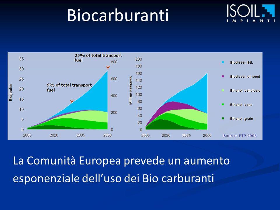 Biocarburanti La Comunità Europea prevede un aumento esponenziale delluso dei Bio carburanti