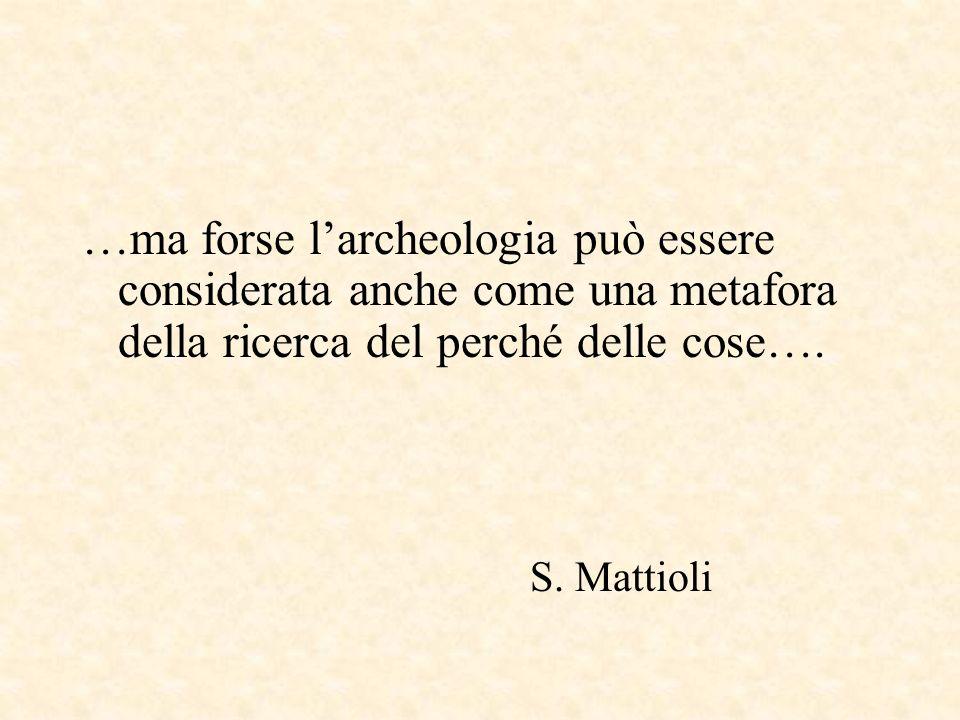 …ma forse larcheologia può essere considerata anche come una metafora della ricerca del perché delle cose….