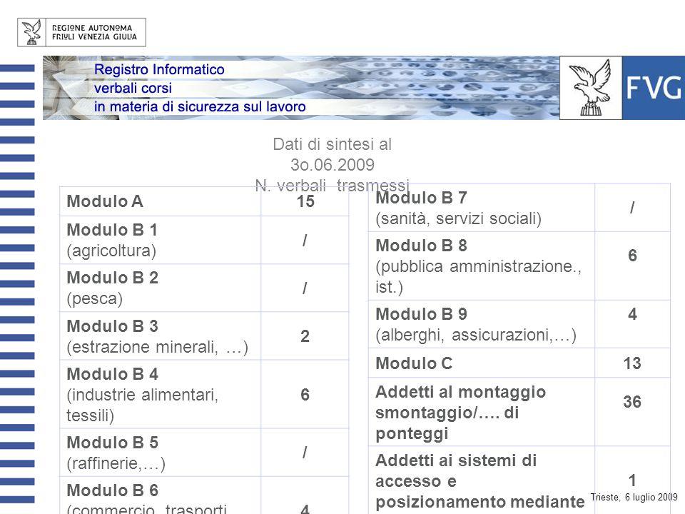 Trieste, 6 luglio 2009 Dati di sintesi al 3o.06.2009 Soggetti formatori registrati12 Soggetti formatori che hanno trasmesso i verbali 5 Verbali trasmessi87