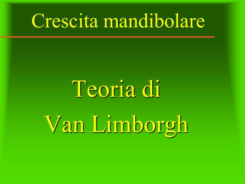 Crescita mandibolare Teoria di Van Limborgh