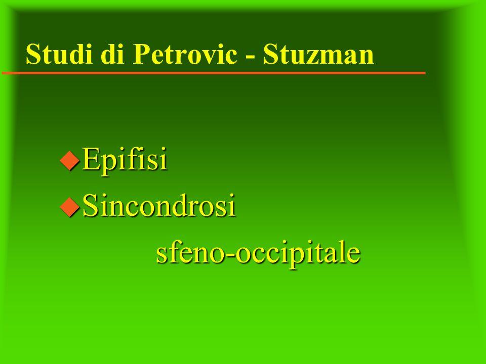 Studi di Petrovic - Stuzman u Epifisi u Sincondrosi sfeno-occipitale