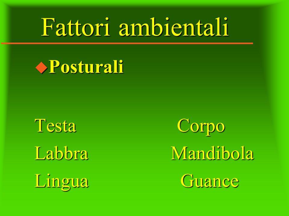 Fattori ambientali u Posturali Testa Corpo Labbra Mandibola Lingua Guance