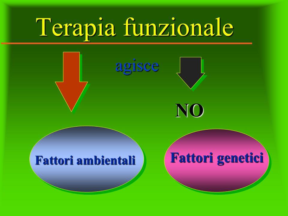 Terapia funzionale agisce agisce NO Fattori ambientali Fattori genetici