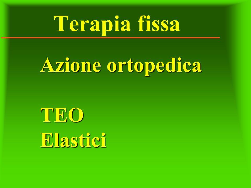 Terapia fissa Azione ortopedica TEOElastici